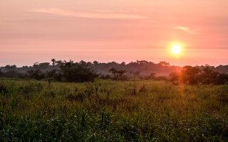 amazonas-bolivia