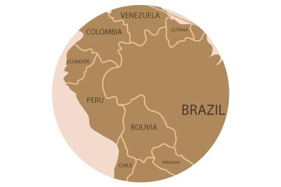 países amazonicos