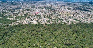 amazonas brasil