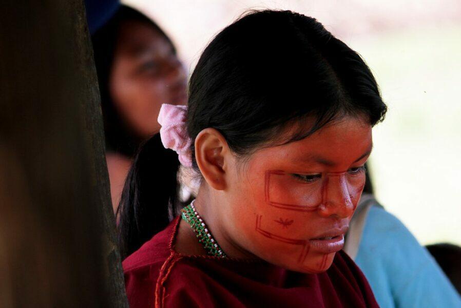 achiote colorante indígena