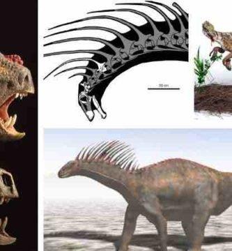 dinosaurios Amazonas