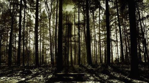 leyendas de terror del amazonas: los iwias y otros demonios
