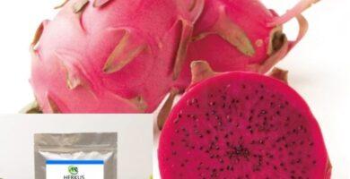extracto organico de pitaya