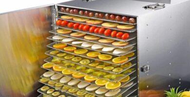 Máquina de secado de frutas JQ máquina de deshidratación deshidratador industrial de alimentos