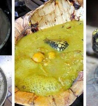 platos tipicos con tortuga charapa