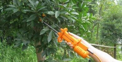 UDDG-150 máquina de recolección de frutas eléctrica granos de café, cacao, dispositivo de recolección de aceitunas máquina de recolección