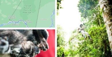 parque nacional amacayacu