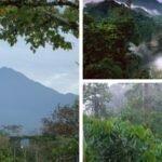Parque Nacional Sumaco Napo-Galeras