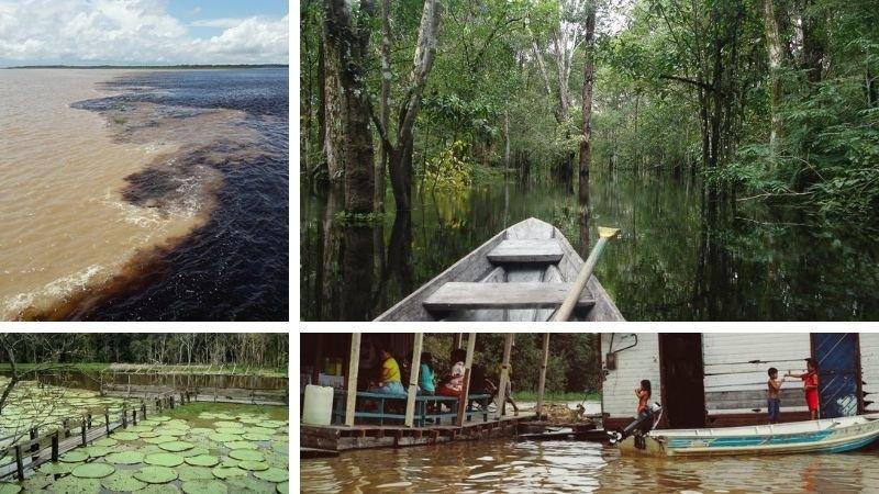 Parque Ecológico del Lago Janauari