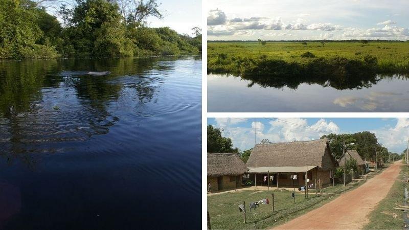 Pampas del Río Yacuma
