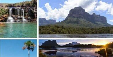 Parque Nacional Parima Tapirapecó